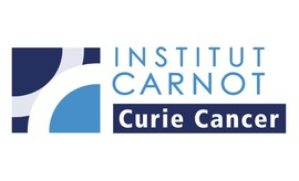logo institut carnot curie cancer web